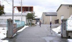 日本発酵化成