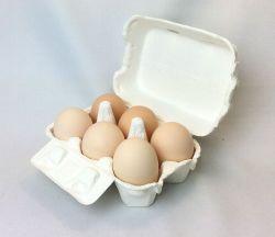 平岡さんの卵